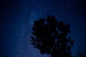 nightwrksp4